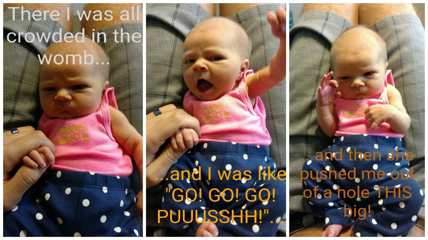 My funny brother-in-law made this meme of his day old daughter, Harbor Rae <3